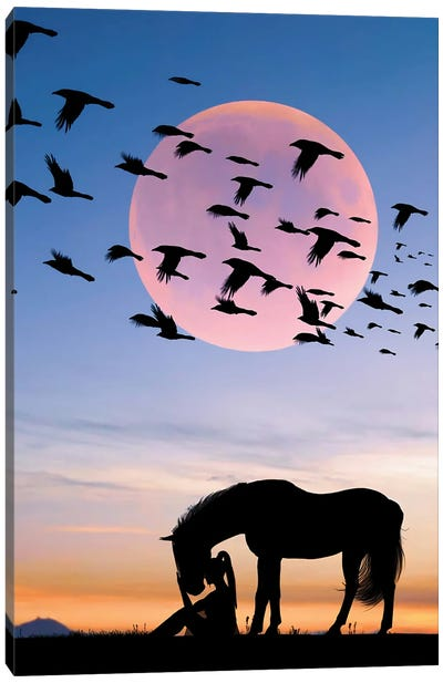 Horse And Woman Canvas Art Print