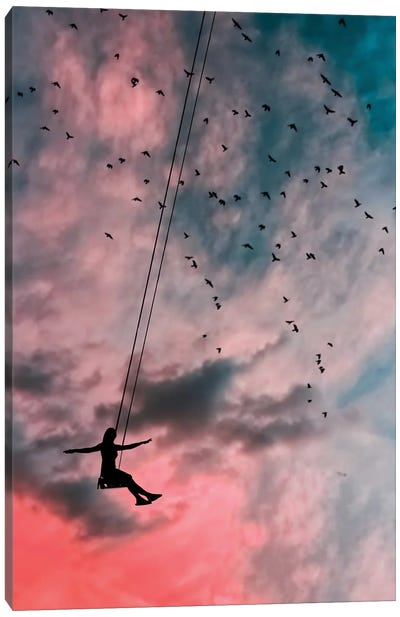 In The Sky Canvas Art Print