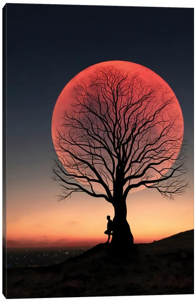 Moon And Man II Canvas Art Print