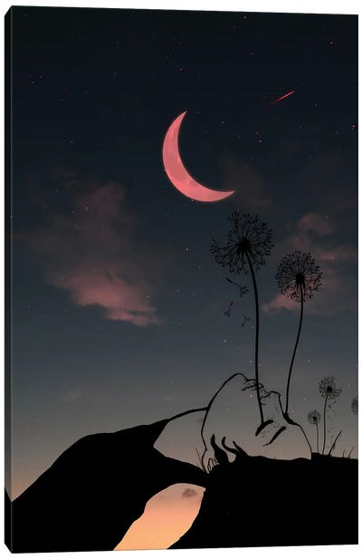 Night And Woman Canvas Art Print