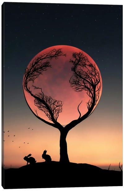 Rabbit And Full Moon Canvas Art Print