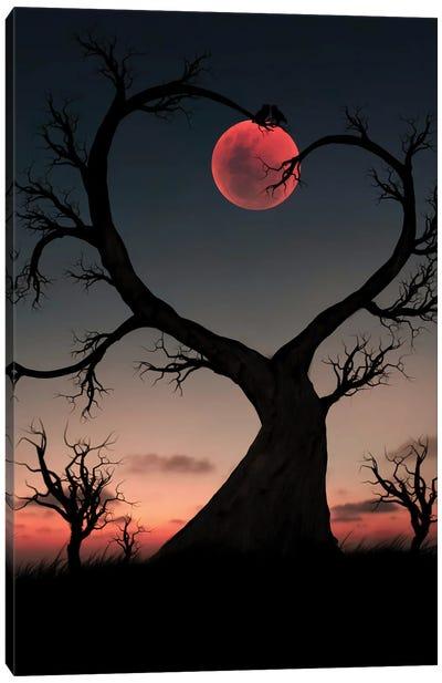 Tree And Owl Canvas Art Print