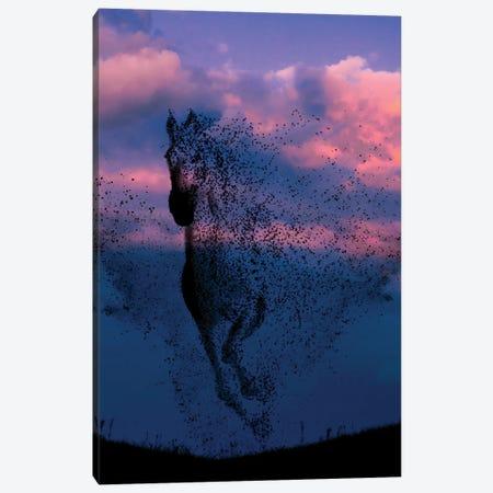 Wind And Horse Canvas Print #AEV53} by Abdullah Evindar Canvas Artwork