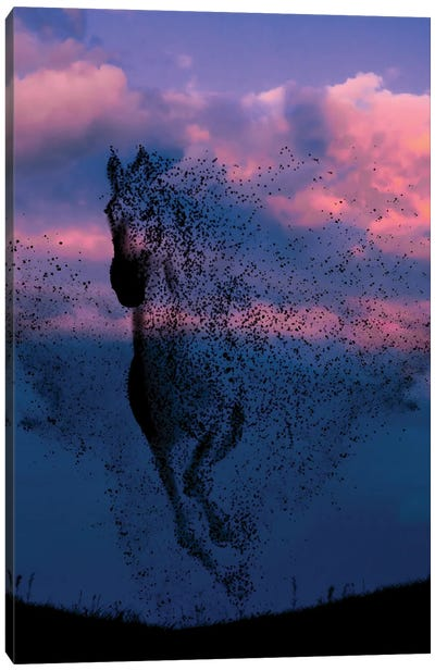 Wind And Horse Canvas Art Print