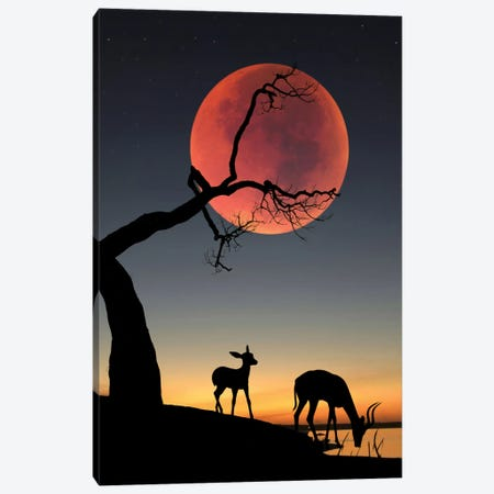 Blody Moon Canvas Print #AEV61} by Abdullah Evindar Art Print