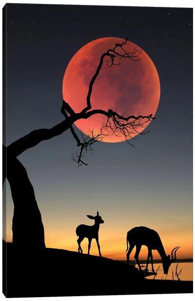 Blody Moon Canvas Art Print