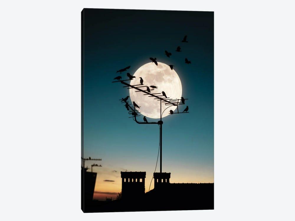 Moon And Birds by Abdullah Evindar 1-piece Art Print