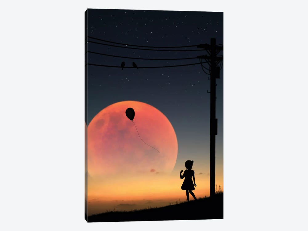 Birds On The Wire by Abdullah Evindar 1-piece Canvas Print
