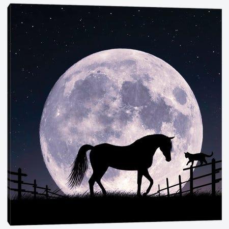 Horse And Moon Canvas Print #AEV67} by Abdullah Evindar Canvas Wall Art