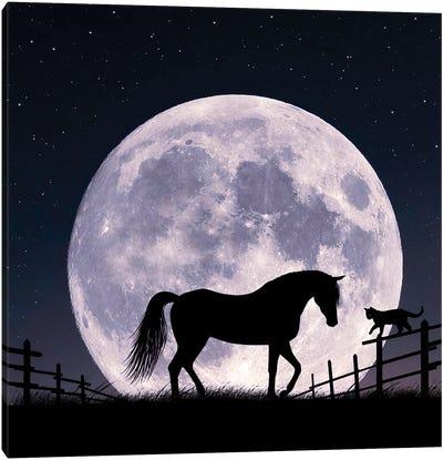 Horse And Moon Canvas Art Print