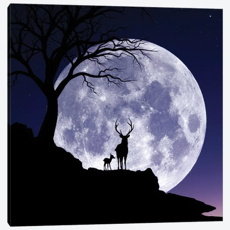 Moon And Gazelle Canvas Print #AEV68} by Abdullah Evindar Canvas Print
