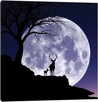 Moon And Gazelle Canvas Art Print