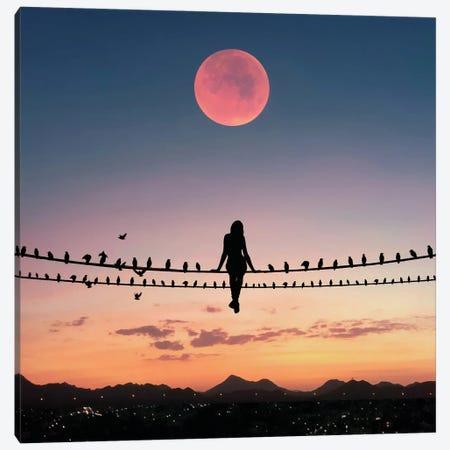 Bird On The Wire Canvas Print #AEV6} by Abdullah Evindar Canvas Art Print