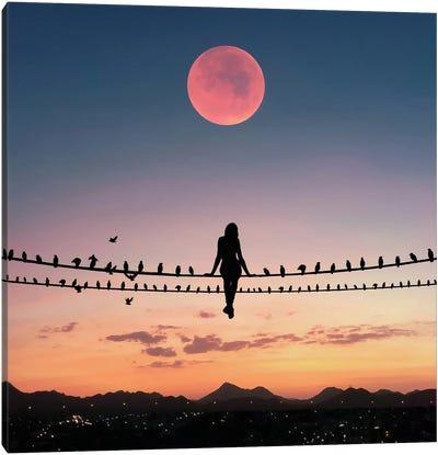 Bird On The Wire Canvas Art Print