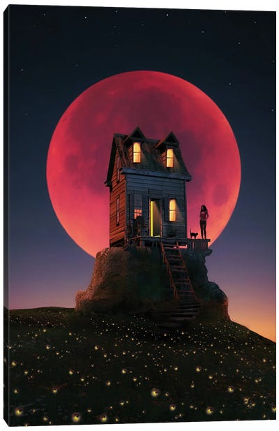 A Night With A Full Moon Canvas Art Print