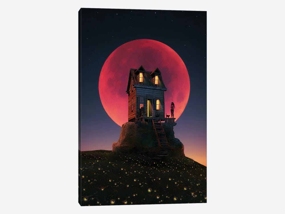 A Night With A Full Moon by Abdullah Evindar 1-piece Canvas Art