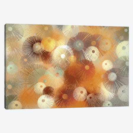 Fireworks Canvas Print #AEZ108} by Angel Estevez Canvas Art