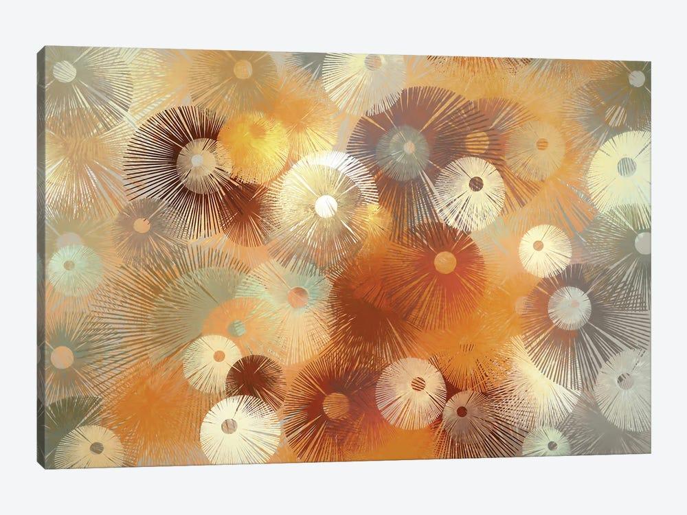 Fireworks by Angel Estevez 1-piece Canvas Wall Art