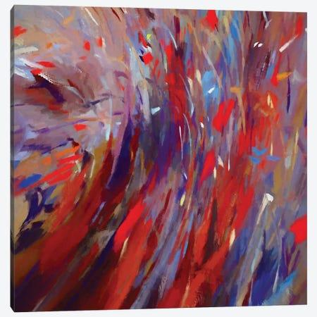 Multiple Strokes Canvas Print #AEZ124} by Angel Estevez Canvas Art Print