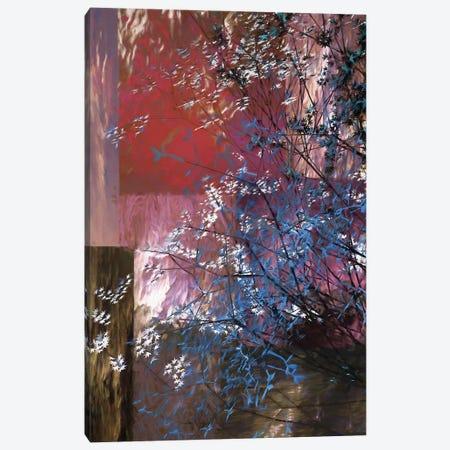 Blue And White Tree Canvas Print #AEZ12} by Angel Estevez Canvas Art