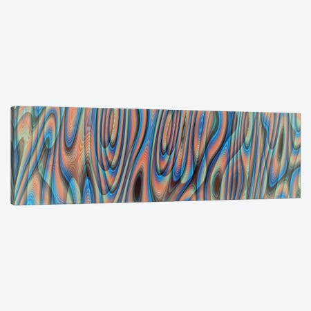 Psychedelic Canvas Print #AEZ185} by Angel Estevez Canvas Print