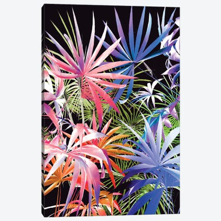Tropical Foliage III Canvas Print #AEZ206} by Angel Estevez Canvas Wall Art
