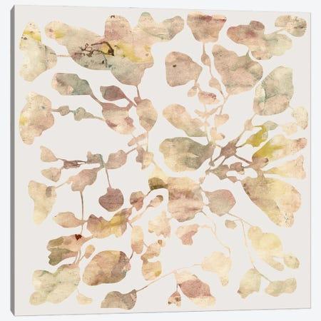 Autumnal Foliage Canvas Print #AEZ232} by Angel Estevez Canvas Wall Art