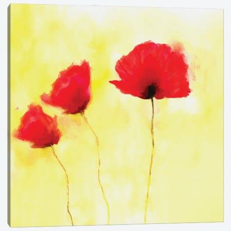 Red Poppies Canvas Print #AEZ236} by Angel Estevez Canvas Print