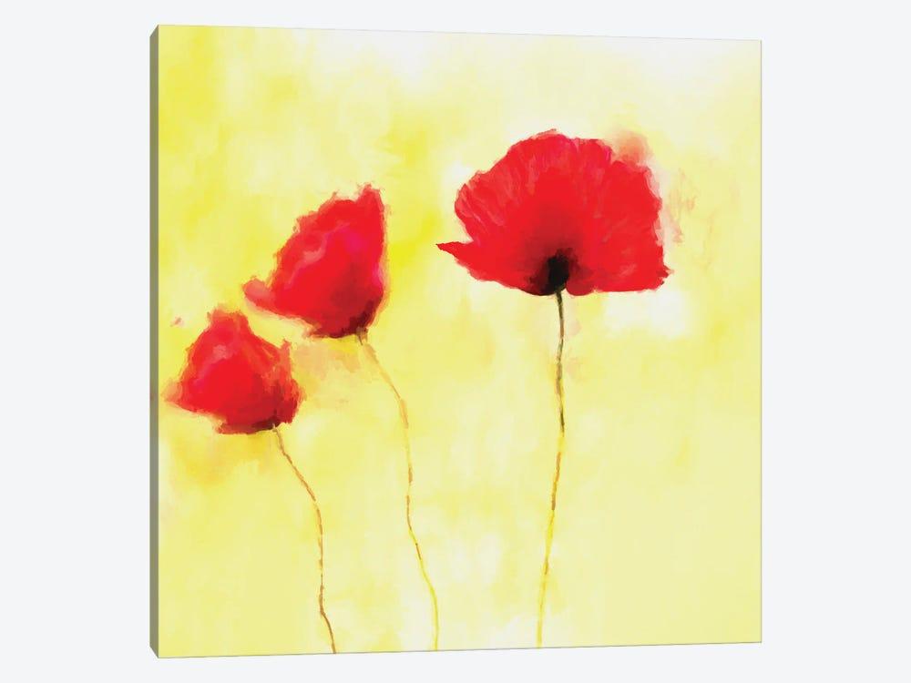Red Poppies by Angel Estevez 1-piece Canvas Art Print