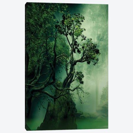 Imposing Tree Canvas Print #AEZ24} by Angel Estevez Canvas Wall Art