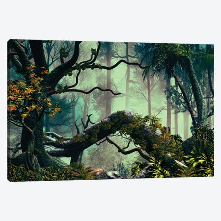 In The Forest Canvas Print #AEZ25} by Angel Estevez Canvas Artwork