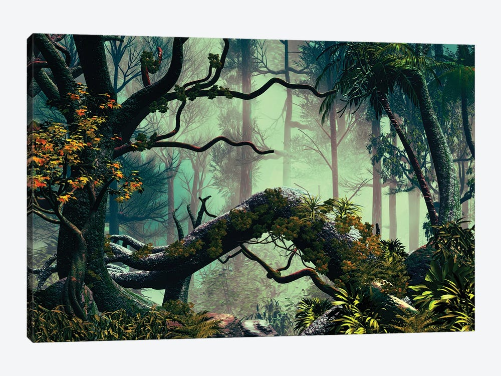 In The Forest by Angel Estevez 1-piece Canvas Wall Art