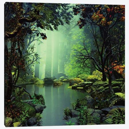 Magic Pond Canvas Print #AEZ28} by Angel Estevez Canvas Print