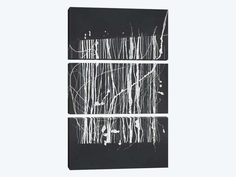Doodles On White by Angel Estevez 3-piece Canvas Print