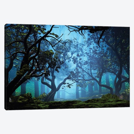 Misty Grove Canvas Print #AEZ30} by Angel Estevez Canvas Wall Art