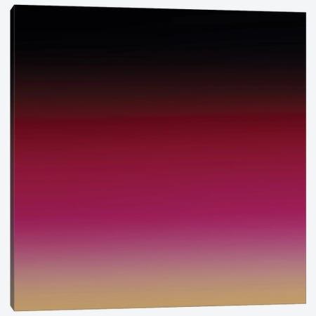 Colors Of The Evening VI Canvas Print #AEZ338} by Angel Estevez Canvas Print