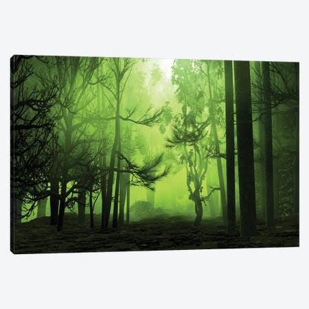 Mystical Forest Canvas Print #AEZ34} by Angel Estevez Art Print
