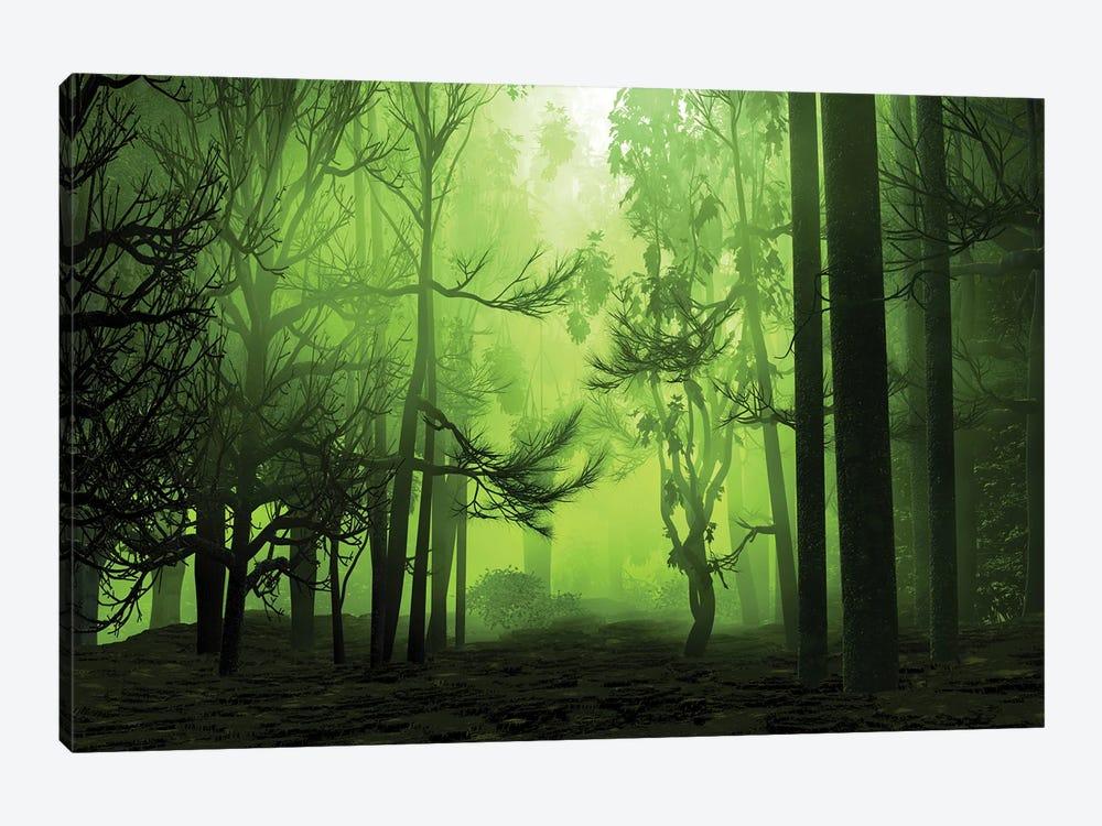 Mystical Forest by Angel Estevez 1-piece Canvas Artwork