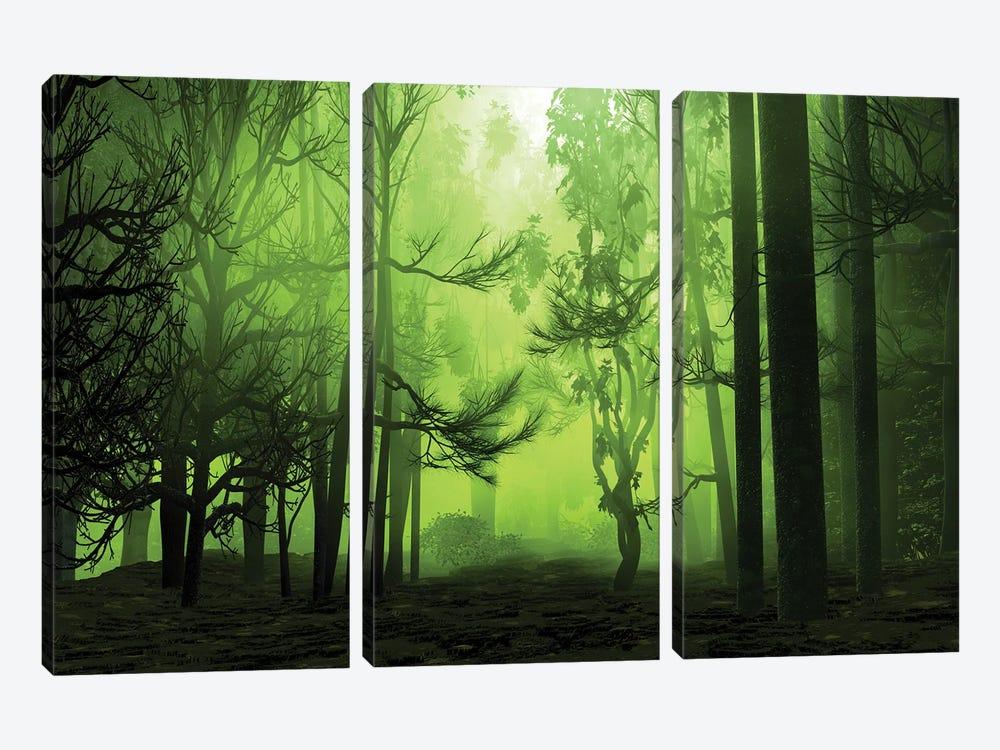 Mystical Forest by Angel Estevez 3-piece Canvas Wall Art