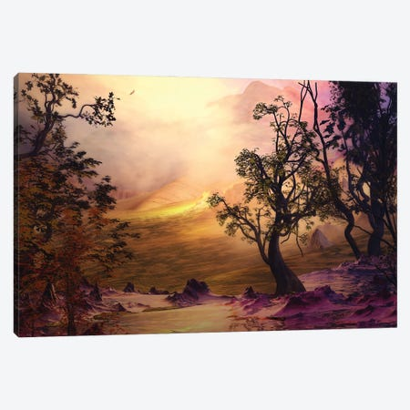 Pink-Toned Landscape Canvas Print #AEZ39} by Angel Estevez Canvas Artwork