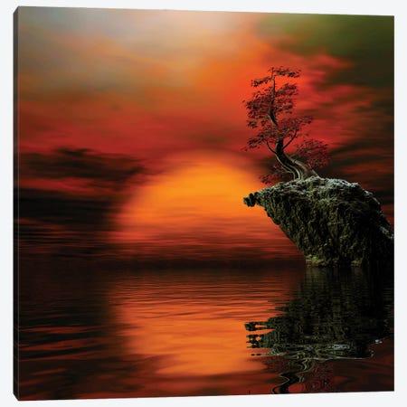 Red Mood Canvas Print #AEZ42} by Angel Estevez Canvas Art Print