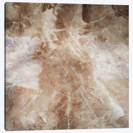 Marbled Canvas Print #AEZ469} by Angel Estevez Art Print