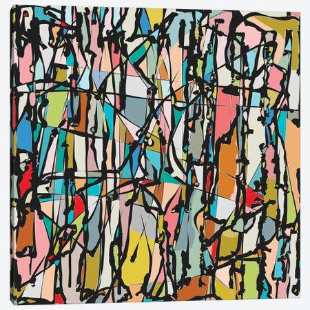 Multicolors II Canvas Print #AEZ474} by Angel Estevez Art Print