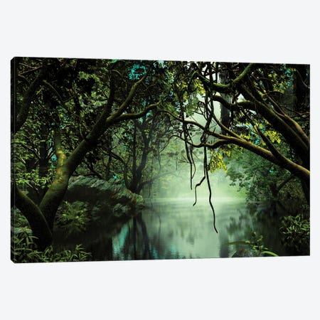 River In The Jungle Canvas Print #AEZ47} by Angel Estevez Canvas Wall Art