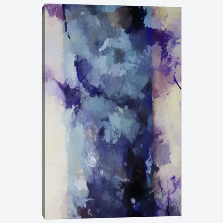 Paint Spill II Canvas Print #AEZ485} by Angel Estevez Canvas Artwork