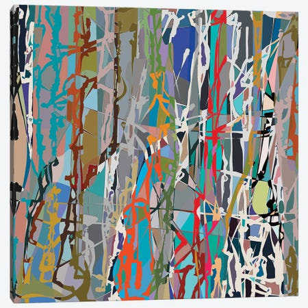 Pollock Wink VIII Canvas Print #AEZ502} by Angel Estevez Canvas Wall Art