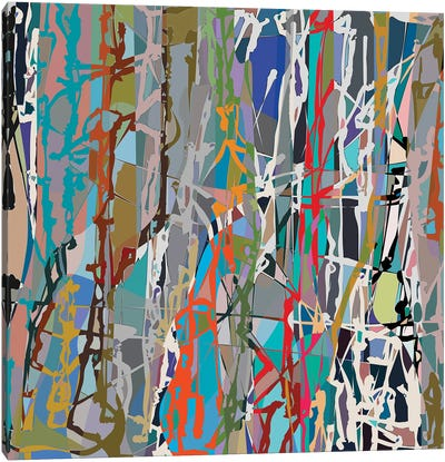 Pollock Wink VIII Canvas Art Print