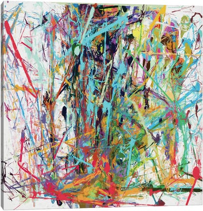 Pollock Wink IX Canvas Art Print