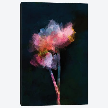 Flowers On Dark Background Canvas Print #AEZ536} by Angel Estevez Canvas Wall Art