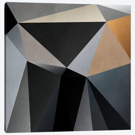 Interconnected Triangles XIV Canvas Print #AEZ558} by Angel Estevez Art Print